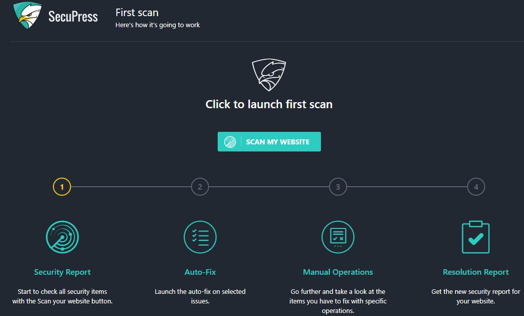 Scan My Website