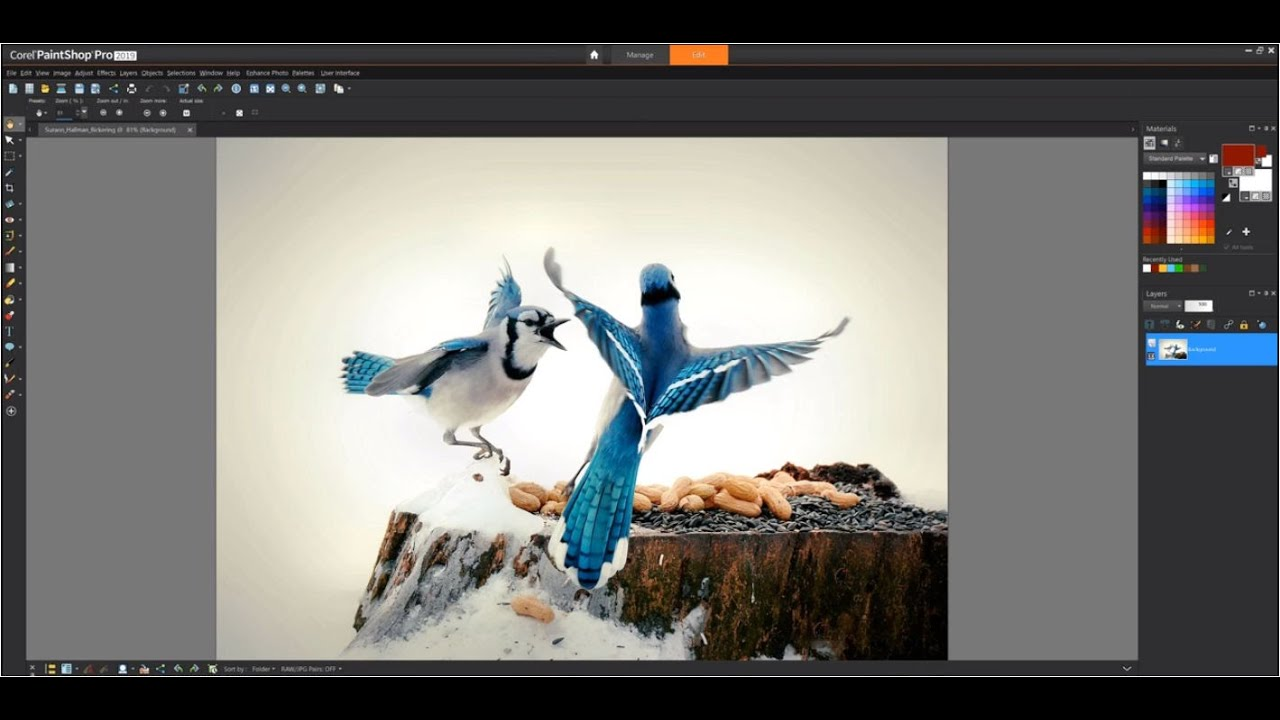 Download phần mềm Corel PaintShop Pro 2021 Ultimate 23.1.0.27
