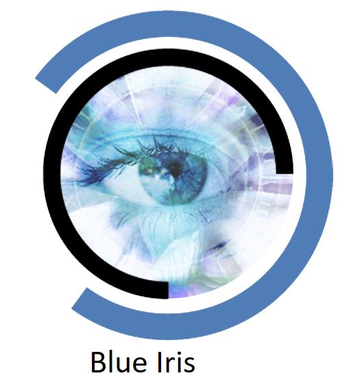 Tải phần mềm Blue Iris 5.3.3.9 (x64) – Camera quan sát nhiều hãng