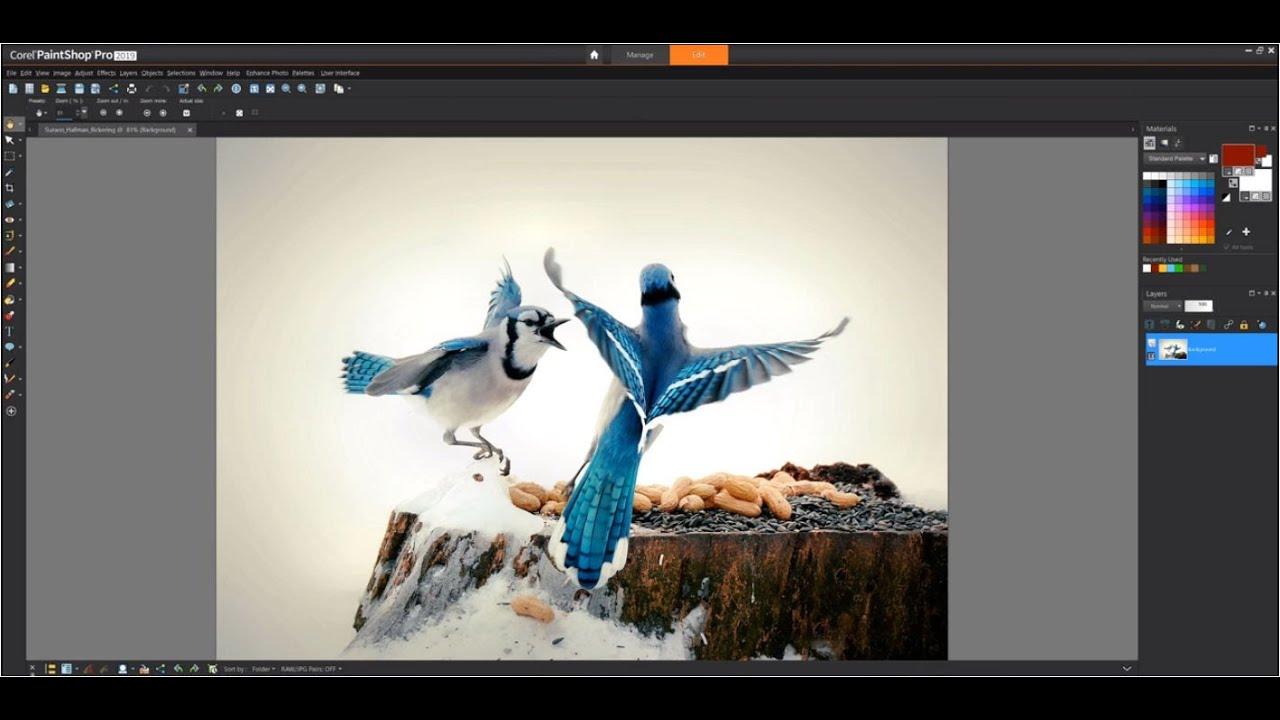 Download phần mềm Corel PaintShop Pro 2021 Ultimate 23.1.0.27