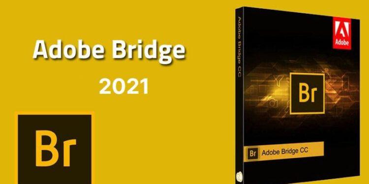 Tải miễn phí Adobe Bridge CC 2021 – REPACKvĩnh viễn